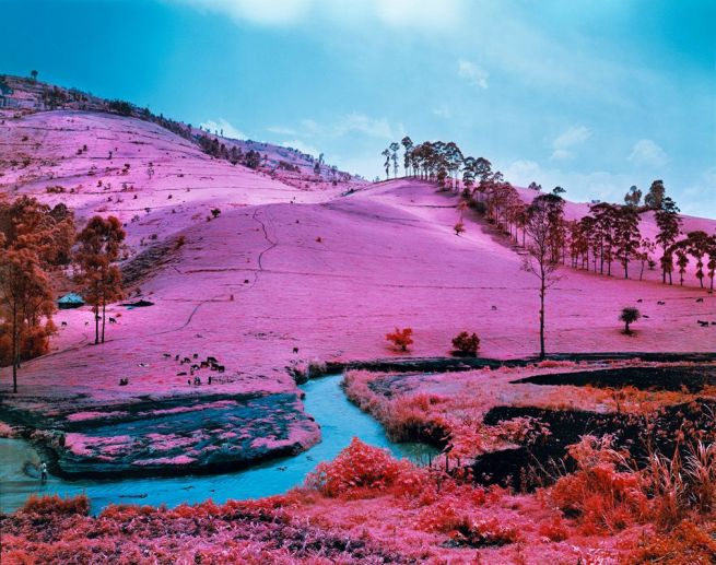 Richard Mosse. 'Men of Good Fortune, North Kivu, Eastern Congo' 2011