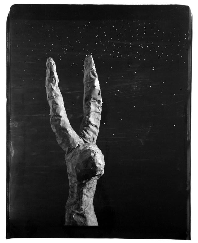 John Divola. 'Rabbit, 87RBA1' 1987