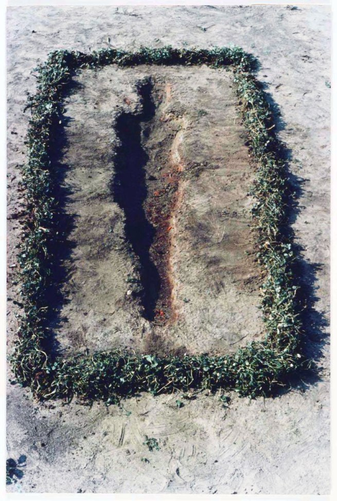 "Ana Mendieta. 'Untitled' 1978 ""Silueta Series, Iowa"""