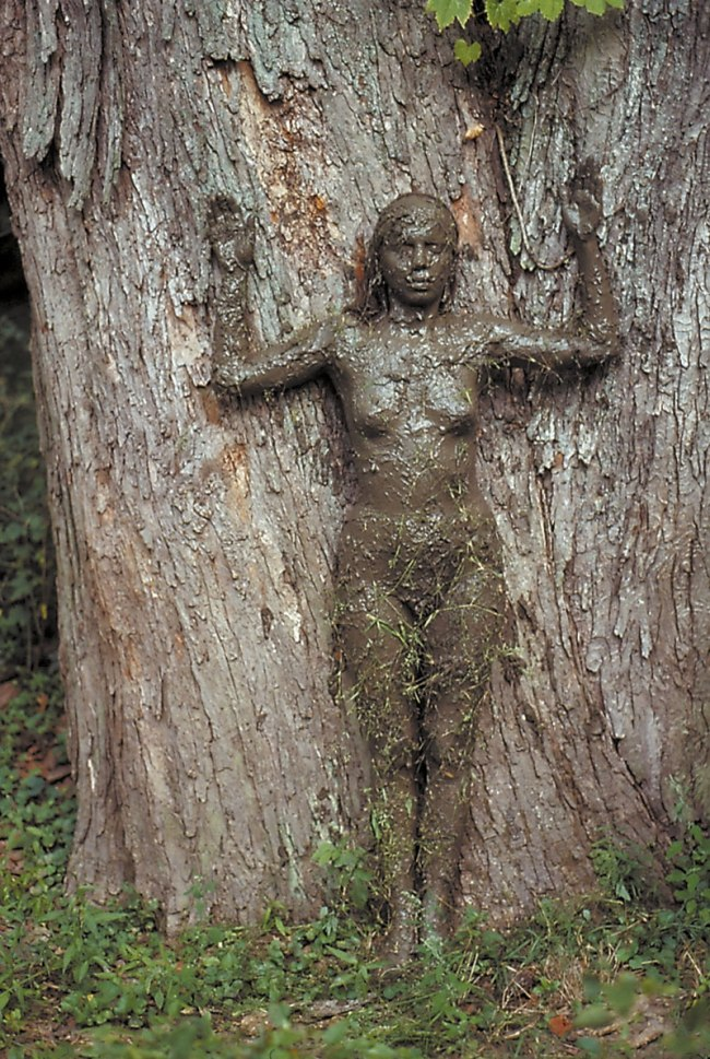 Ana Mendieta. 'Tree of Life' 1976