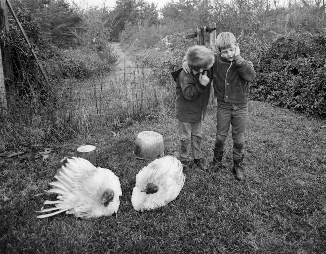 Emmet Gowin. 'Barry, Dwayne and Turkeys, Danville, Virginia' 1970