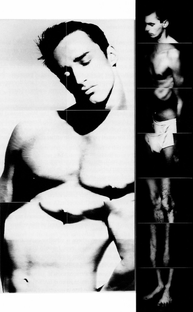 Lex Middleton. 'Gay Beauty Myth' 1992