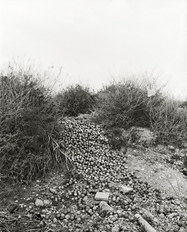 Vanessa Winship. 'Untitled' from the series 'Almería. Where Gold Was Found' 2014