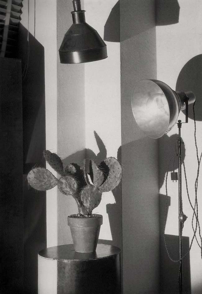 Charles Sheeler (American, 1883-1965) 'Cactus and Photographer's Lamp, New York' 1931