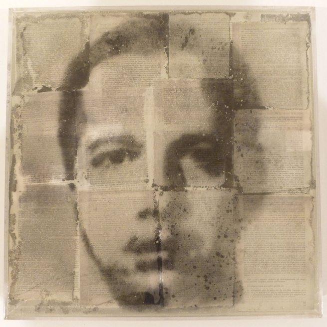 Oscar Muñoz. 'Narcisos (en proceso)' [Narcissi (in process)] 1995-2011