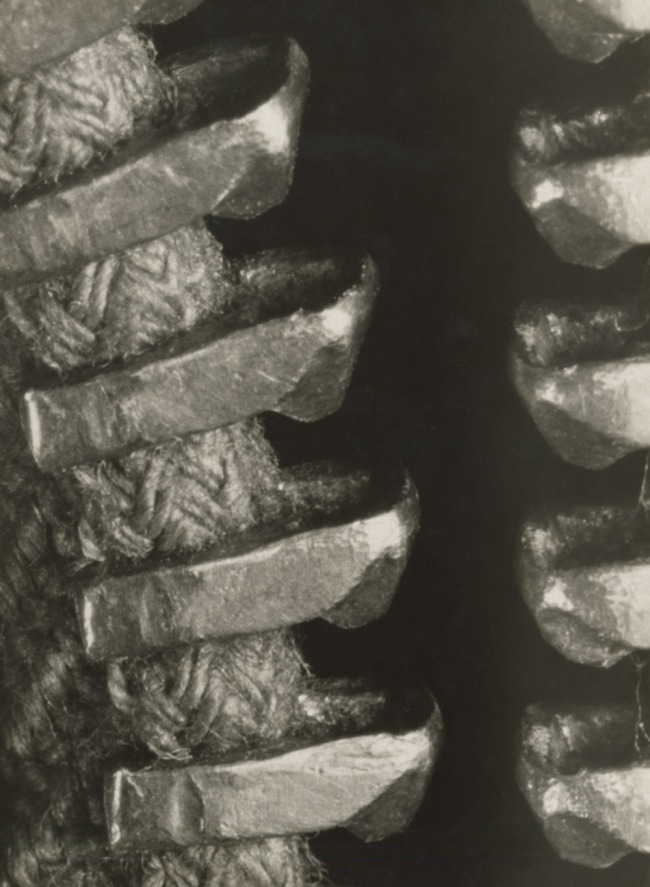Albert Renger-Patzsch (1897-1966) 'Untitled (Close-up of a Zip Fastener)' 1928-1933