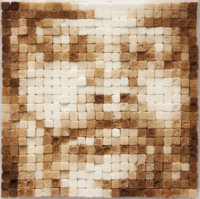Oscar Muñoz. 'Pixeles' [Pixels] 1999-2000