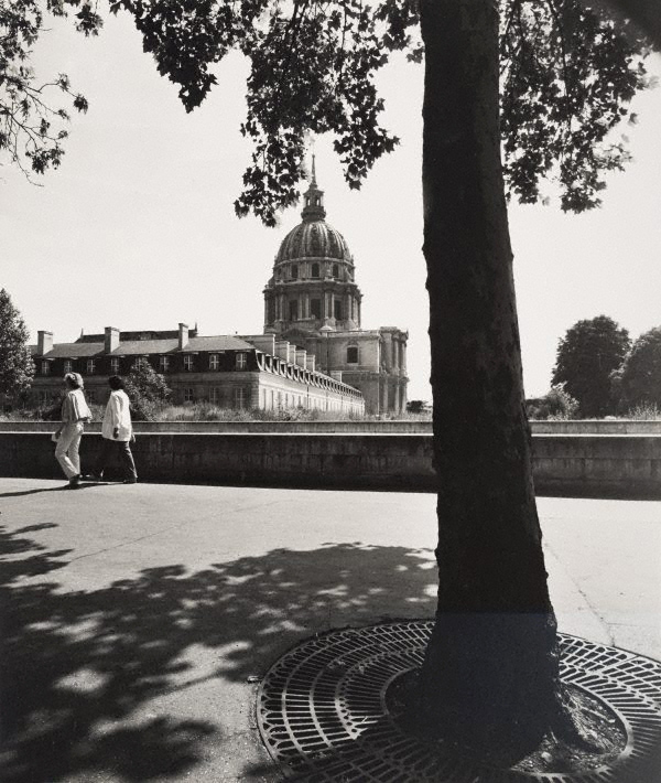Max Dupain (Australia 22 Apr 1911 - 27 Jul 1992) 'Untitled (tree on Boulevard de la Tour Maubourg, with Hôtel des Invalides in the distance)' 1978