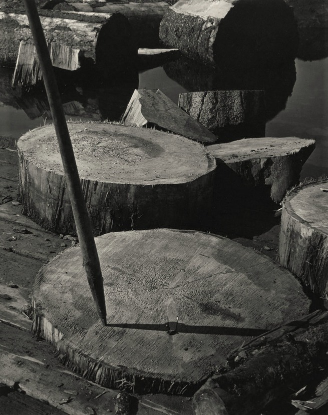 Minor White. 'Lily Pads and Pike, Portland, Oregon' c. 1939