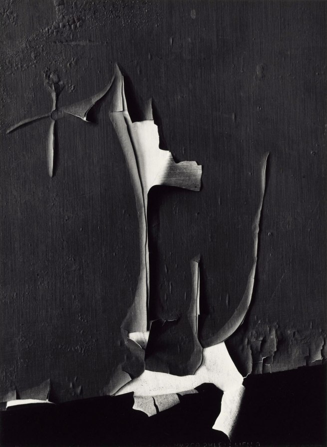 Minor White. 'Peeled Paint, Rochester, New York' 1959