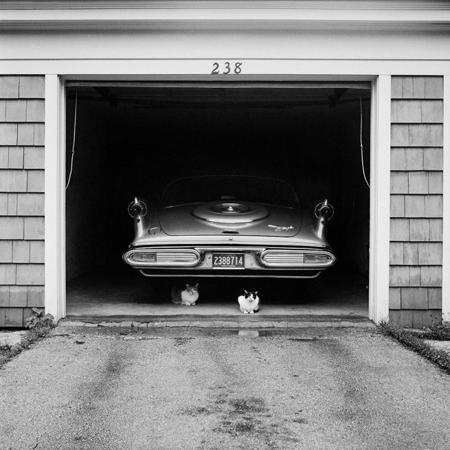 Vivian Maier. 'July 1957. Chicago Suburb, IL'