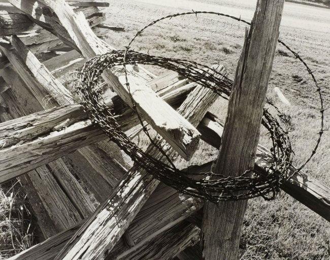 Minor White. 'Cabbage Hill, Oregon (Grande Ronde Valley)' 1941