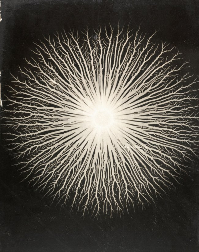 Gyorgy Kepes (U.S.A., b. Hungary 1906-2001) 'Lichtenberg figures: A. R. von Hippel' 1951