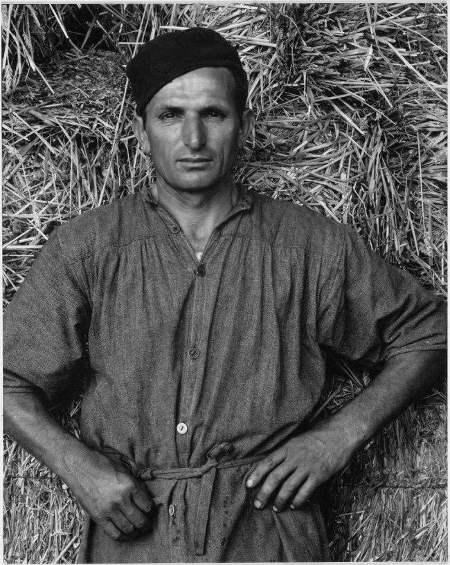 Paul Strand. 'Farmworker, Luzzara, Italy' 1953