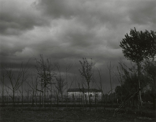 Paul Strand. 'The Farm, Luzzara' 1953