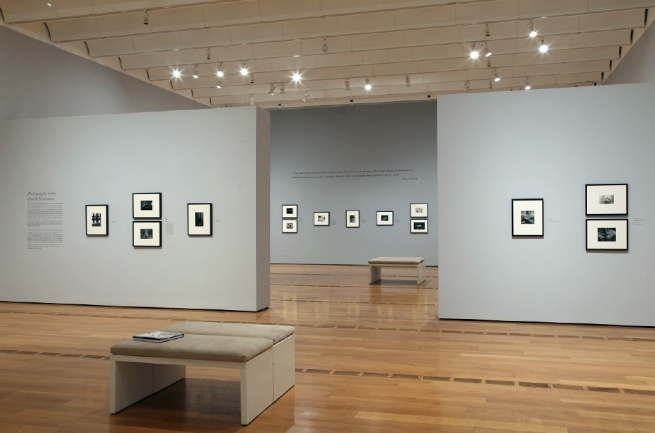 Gallery 1