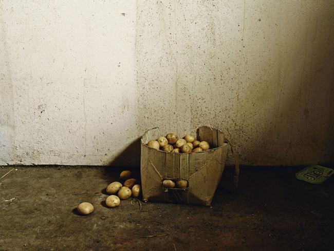 Pieter Hugo. 'Inside the Bester's home, Vermaaklikheid' 2013