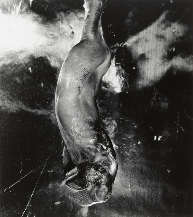 Shomei Tomatsu. 'Melted bottle' Nagasaki, 1961