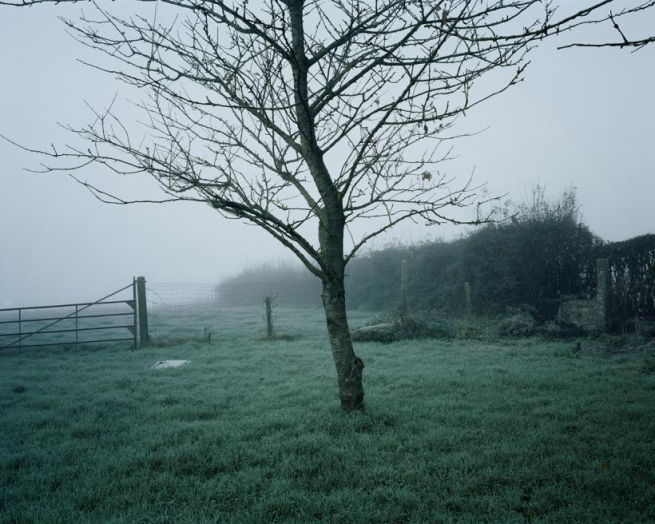 Chloe Dewe Mathews. 'Six Farm, Loker, West-Vlaanderen' 2013