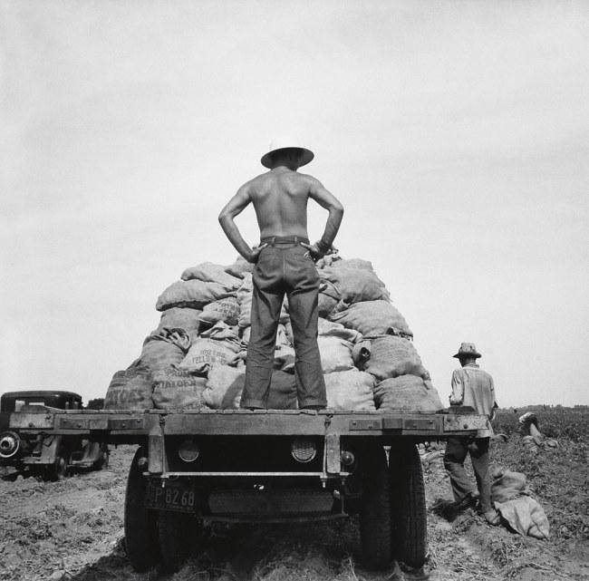 Dorothea Lange (1895-1965) 'Potato truck in the field near Shafter, California' 1937