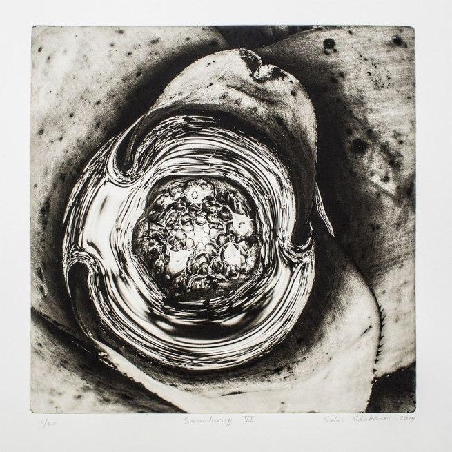 Silvi Glattauer. 'Sanctuary VI' 2014