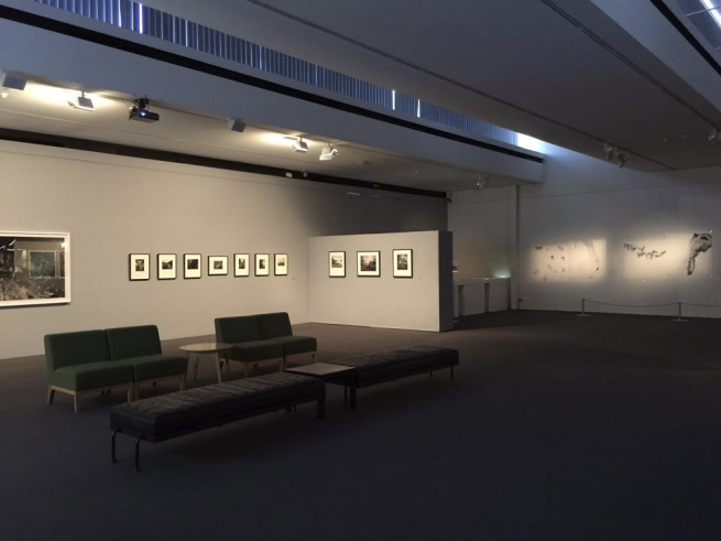 Installation photograph of 'Earth Matters' at the Monash Gallery of Art, Melbourne