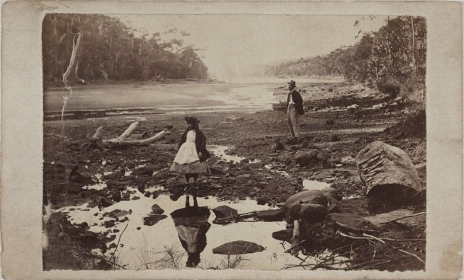 Unknown photographer. 'Australian scenery, Middle Harbour, Port Jackson' c. 1865