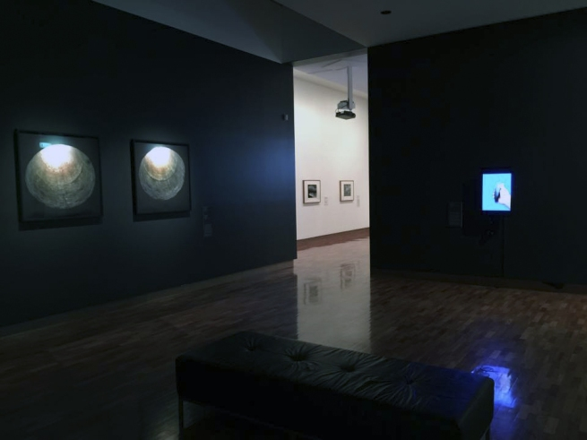 Installation photograph of the exhibition 'Nature/Revelation' at The Ian Potter Museum of Art, Melbourne