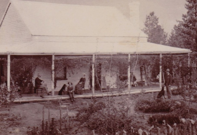Unknown photographer. 'Quandong' (detail) 1887