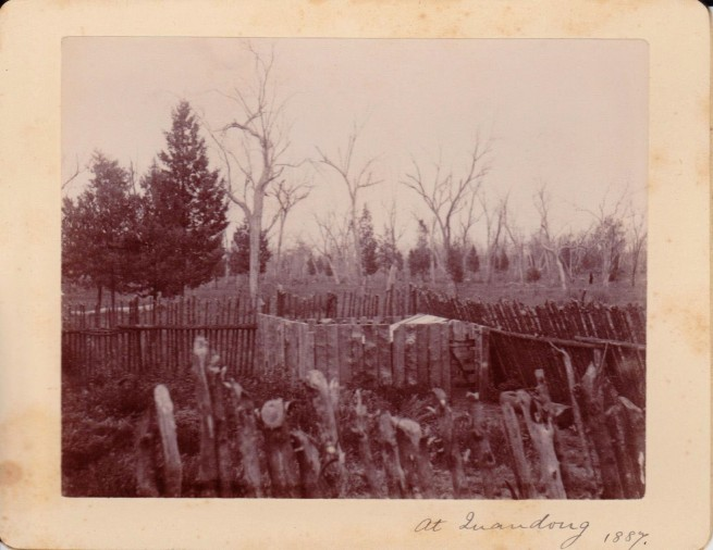 Cabinet card of Quandong, New South Wales, Australia, 1887