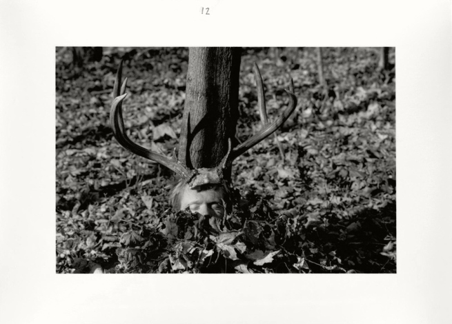 Duane Michals. 'The Bewitched Bee' 1986