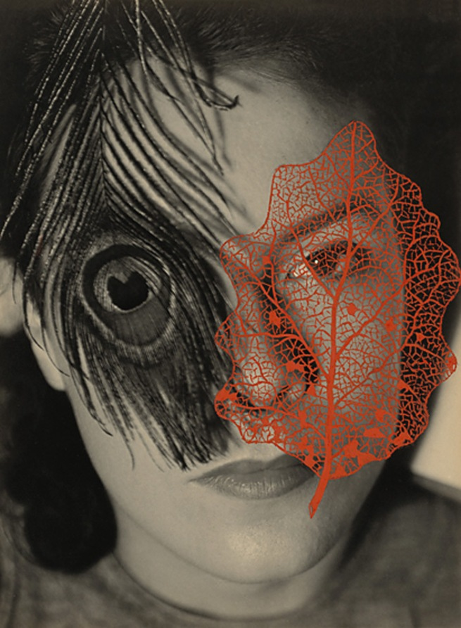 György Kepes. 'Juliet with Peacock Feather and Red Leaf' 1937-1938