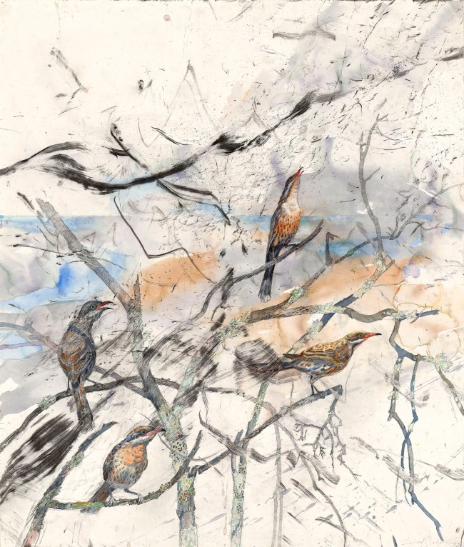 John Wolseley. 'After fire - spiny-cheeked honeyeaters at Lake Monibeong' (detail) 2009-11