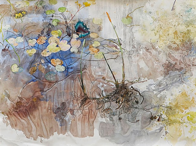 John Wolseley. 'Natural history of a sphagnum bog, Lake Ina, Tasmania' (detail) 2013