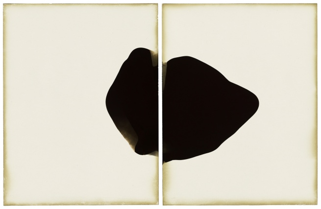 Alison Rossiter (American, born 1953) 'Haloid Platina, exact expiration date unknown, about 1915, processed 2010' 2010