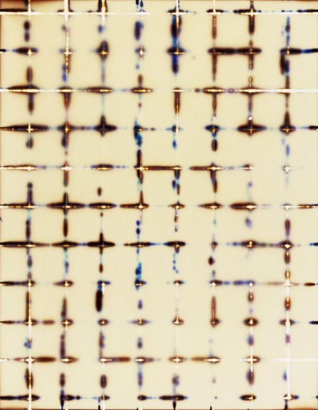 Marco Breuer (German, born 1966) 'Untitled (C-62)' 2002