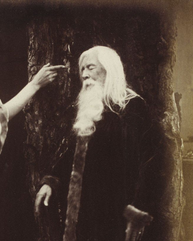 Julia Margaret Cameron. 'Vivien and Merlin from Illustrations to Tennyson's Idylls of the King' (detail) 1874