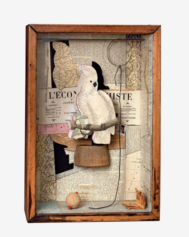 Joseph Cornell. 'A Parrot for Juan Gris' 1953-54