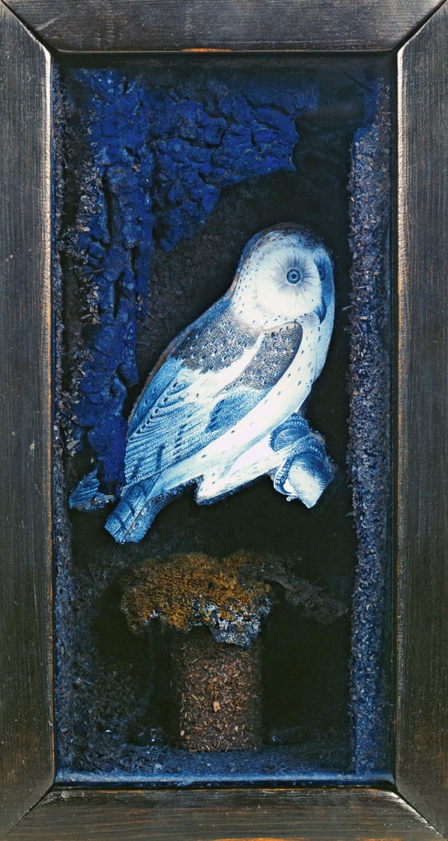 Joseph Cornell. 'Untitled (Owl Habitat)' c. mid- to late 1940s
