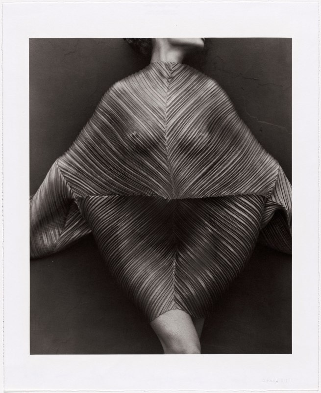 Herb Ritts. 'Wrapped Torso, Los Angeles' 1989