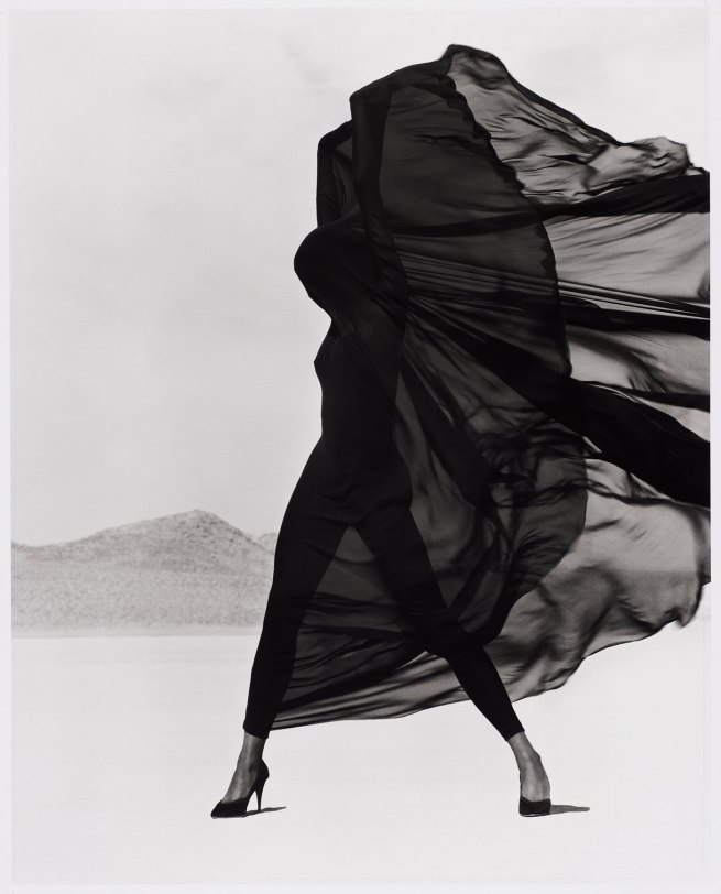 Herb Ritts. 'Versace Veiled Dress, El Mirage' 1990