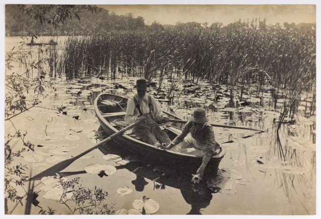 Peter Harry Emerson. 'Gathering Water Lilies' 1886