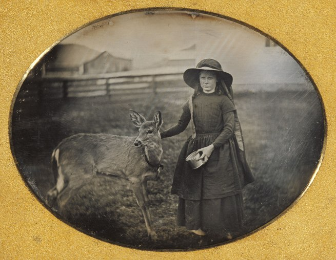 Unknown maker, American. 'Portrait of a Girl with her Deer' c. 1854