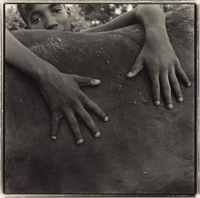 Keith Carter (American, born 1948) 'Goodbye to a Horse' 1993