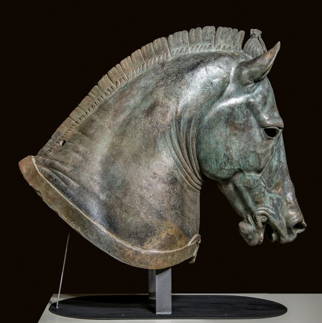 "Horse Head ""The Medici Riccardi Horse"" About 350 B.C."