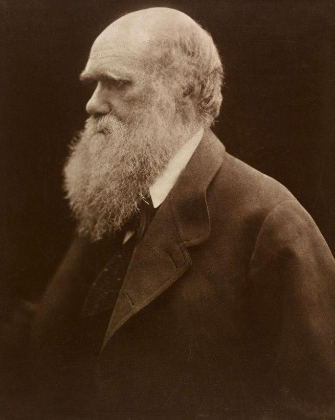 Julia Margaret Cameron. 'Charles Darwin' 1868; printed 1875