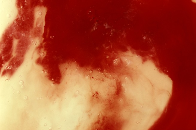 Andres Serrano (born 1950) 'Blood and Semen III' 1990
