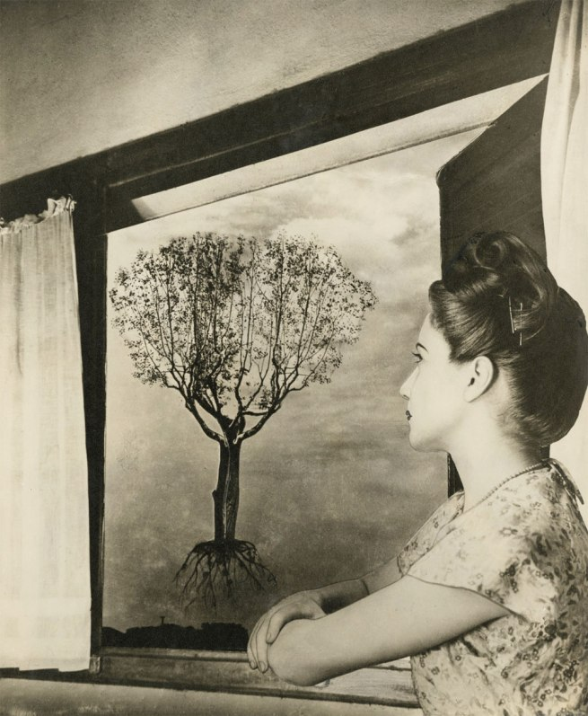 Grete Stern (Argentine, born Germany, 1904-1999) 'Sueño No. 43: Untitled' 1949