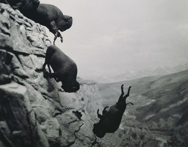 David Wojnarowicz (Born Red Bank, New Jersey, 1954; Died New York, New York, 1992) 'Untitled (Buffalo)' 1988-89
