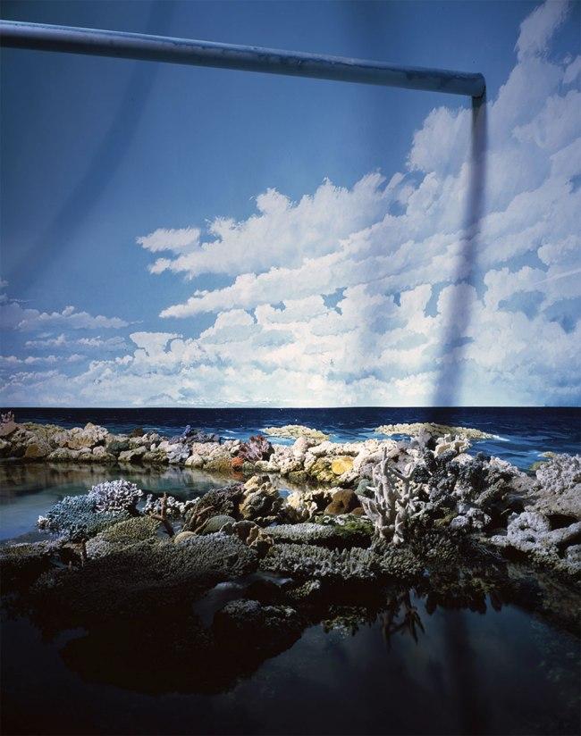 Frederico Cãmara. 'Sydney Sealife Aquarium, Sydney, Australia' 2014